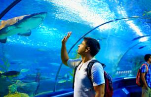 Tickets for the Barcelona Aquarium