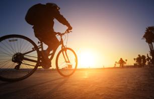Bike Rental in Los Angeles – 24 hours