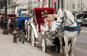 Visit Central Park in a Horse-Drawn Carriage