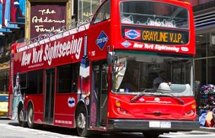 New York Bus Tours – 2 or 3 Day Transport Pass