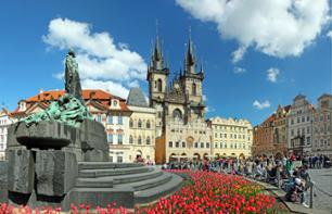 Guided tour of Prague by bus and on foot