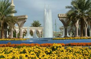 Guided Excursion to the Al Ain Oasis