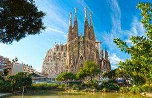 Skip-the-Line Tickets to the Sagrada Familia – Optional Audio Guide and Access to the Towers