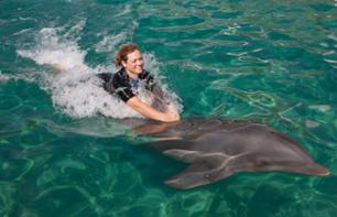 Swimming with Dolphins + Admission to Miami Seaquarium