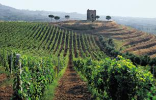Trip to the Castelli Romani Region with Wine Tasting